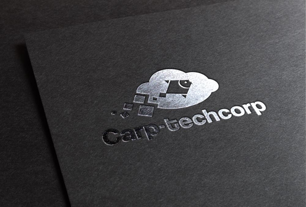 Carptech-www.gillyvu.vn-5