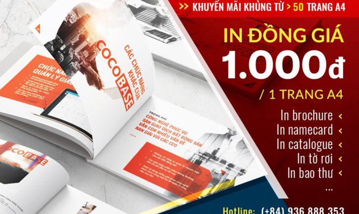 Khuyến mãi in nhanh Catalogue/Brochure