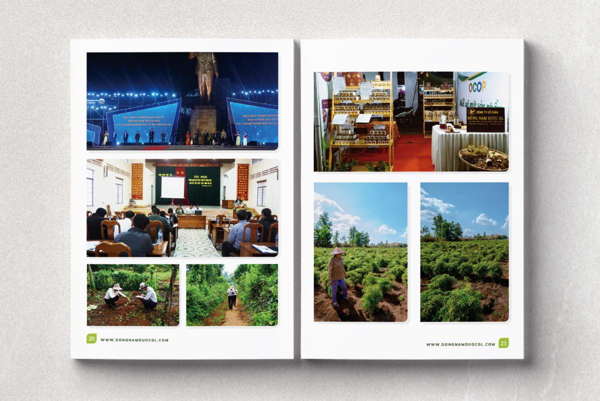DONAPHARM_dan_trang_brochure_chuyen_nghiep_gia_tot_10