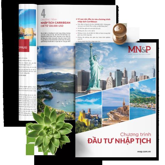 MN&P Brochure